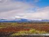 islandia-iceland-56