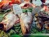 mercat-de-sant-josep-de-la-boqueria-12