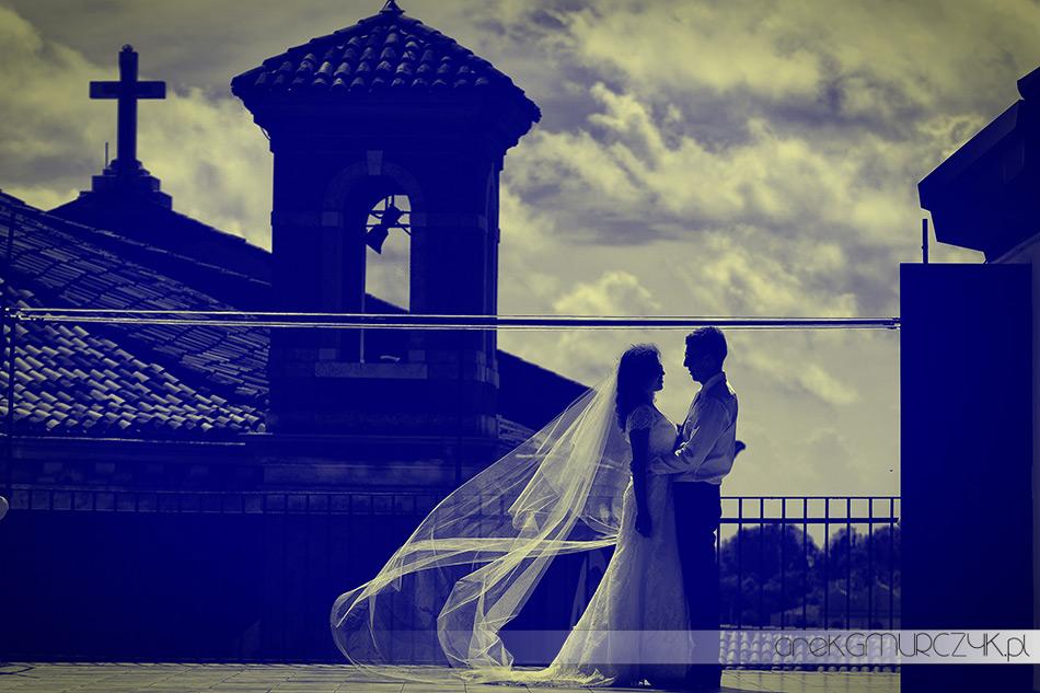 zdjęcia plener ślubny