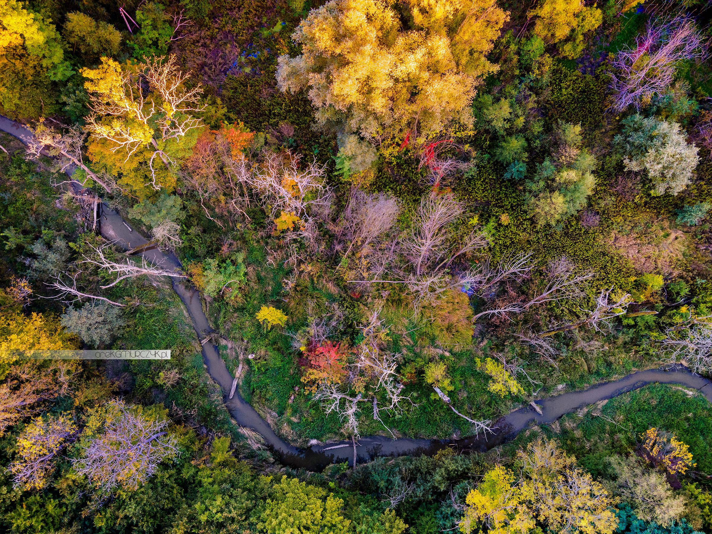 Zespół Przyrodniczo-Krajobrazowy Jaru Rzeki Brzeźnicy, zdjęcia lotnicze